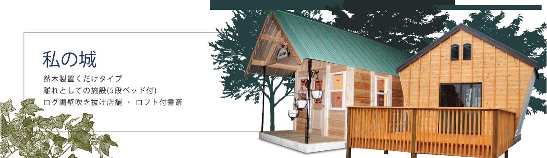 私の城 天然木製置くだけタイプ 離れとしての施設(5段ベッド付) ログ調壁吹き抜け店舗・ロフト付書斎